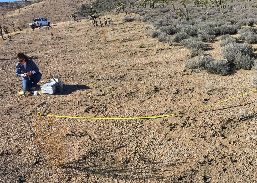 Researcher collects soil samples in burned area near Las Vegas.