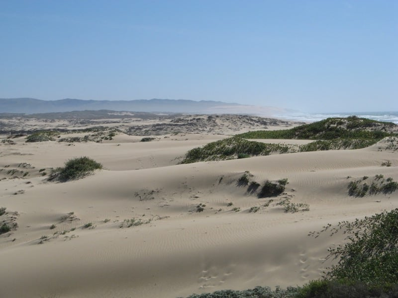 Dust Control at the Oceano Dunes