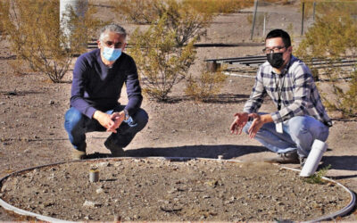 What happens when rain falls on desert soils? An updated model provides answers
