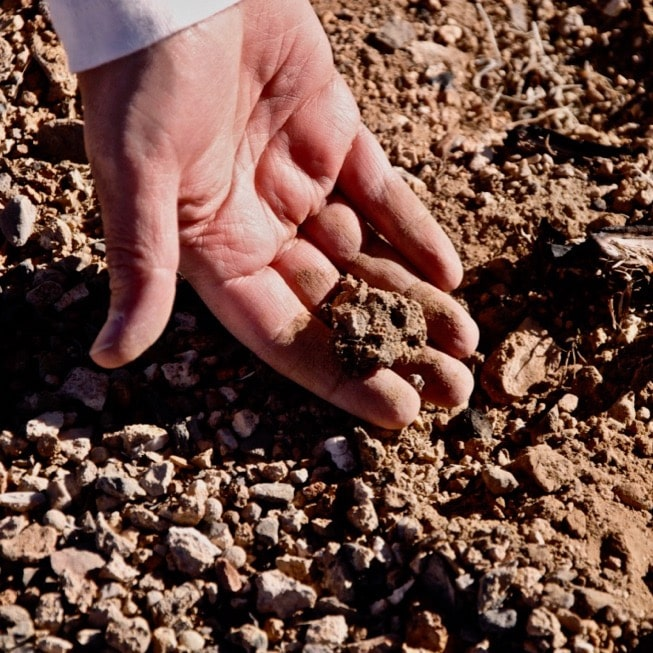 Markus Berli works with soil sample.