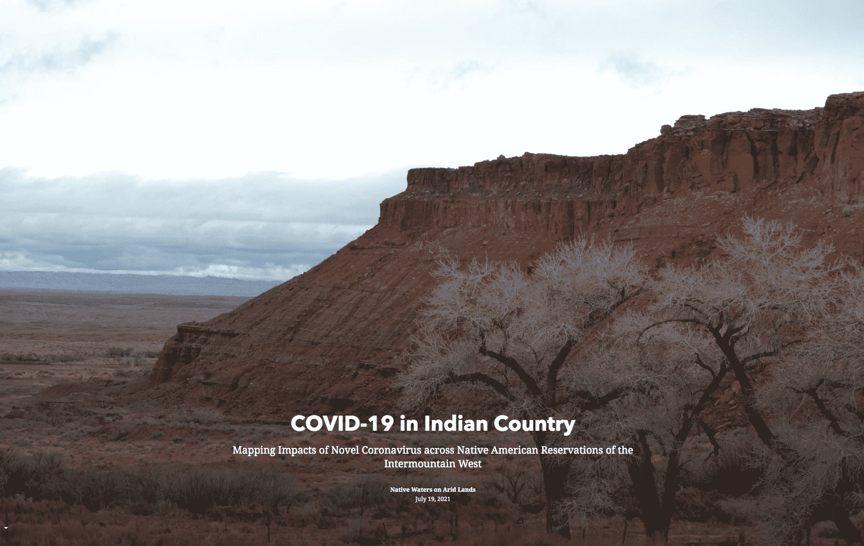 """Linked image: Click to continue to NWAL's """"COVID19 in Indian Country"""" StoryMap"""