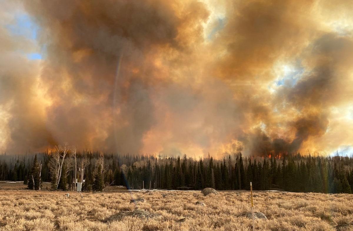 fum provenind dintr-o pădure arzătoare