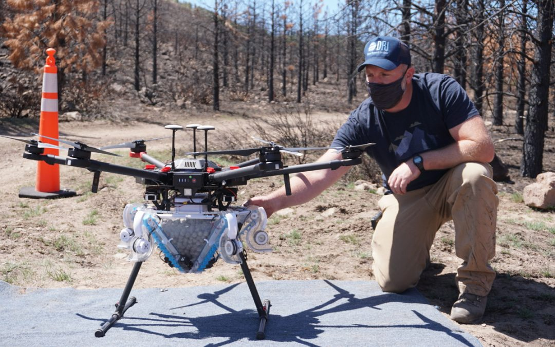 Restoration by Drone: DRI and Partners Test New Method for Reseeding Native Forests after Wildfire