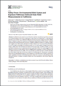 Image of Valley Fever paper