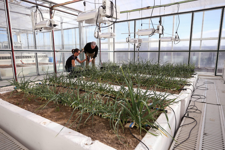 DRI's advanced climate-controlled EcoCell research facility in Reno