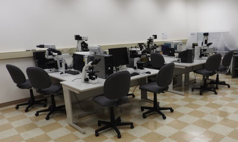Work stations in the MAVL can be configured to your specialized needs.