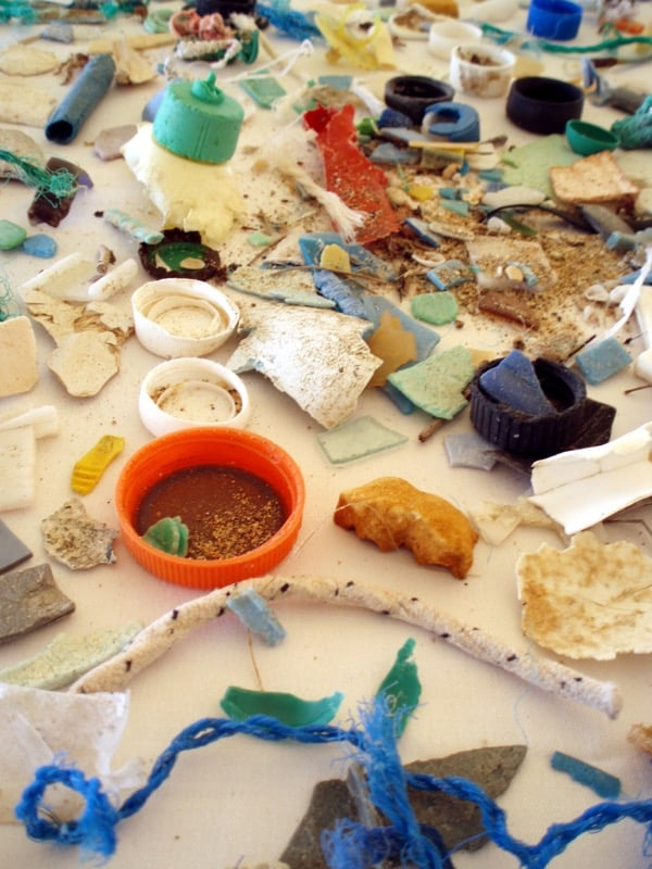 Problem Plastic: Investigating Microplastic Pollution in Nevada's Waterways