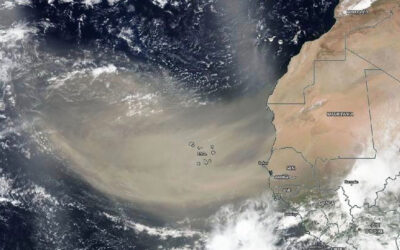 Featured Research: DRI scientists analyze origins of the Saharan dust plume