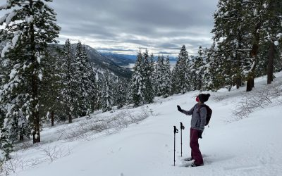 Traditional hydrologic models may misidentify snow as rain, new citizen science data shows