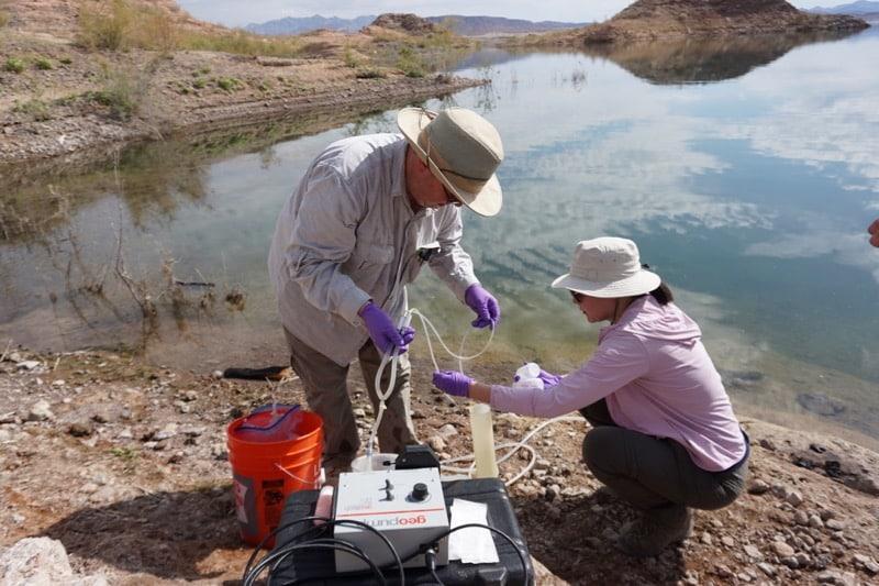 Evaluation of Antibiotic Resistance Genes (ARGs) in the Urban Wetland Ecosystem: Las Vegas Wash
