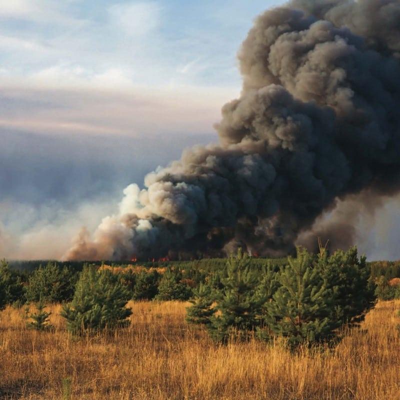 Fire and smoke plume.